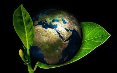 Méditation pour la Terre du 27/01/2021
