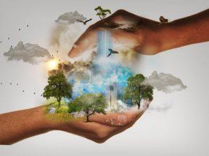 Méditation pour la Terre - Haguenau @ Alcyone Harmonie | Haguenau | Grand Est | France